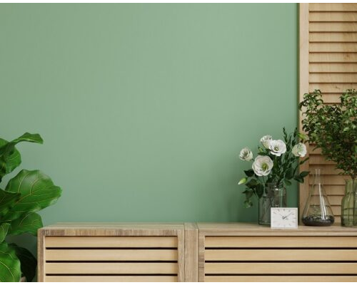 Interior wall with green plant